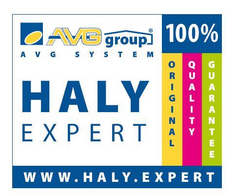logo haly expert